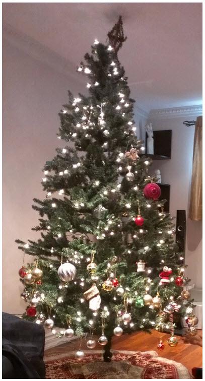 Nephew decorated Christmas tree.